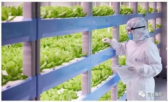 无线,有线产品,植物工厂现场监测