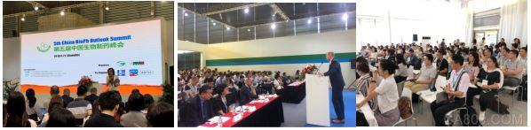 P-MEC,制药工业,医药,国际化大平台
