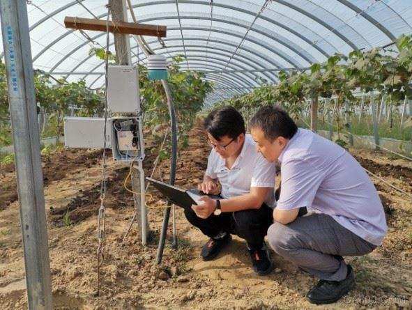 智慧农业,植物联网项目解决方案,昆仑海岸
