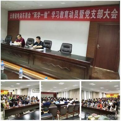 简报|云南省电动车商会庆祝建党95周年活动
