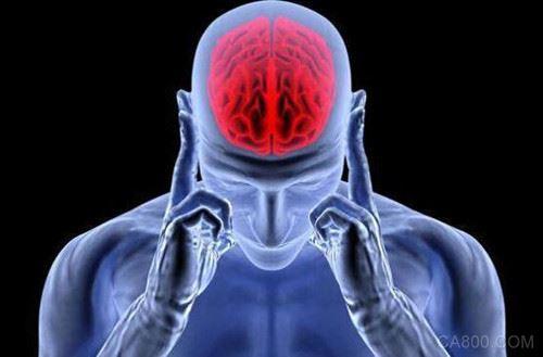 ARM正研发新型大脑芯片 可置于人的颅骨内