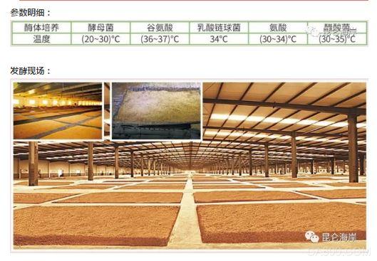 粮食发酵过程全监控--- 酿造工业