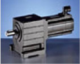 伦茨 GST圆柱斜齿轮减速器