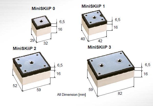 MiniSkiip