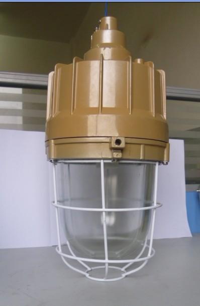 近期创新产品防爆节能无极灯 LED防爆灯具