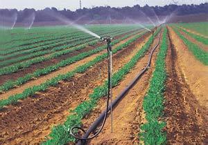 郑州金斗云JDYKJ智能灌溉控制系统