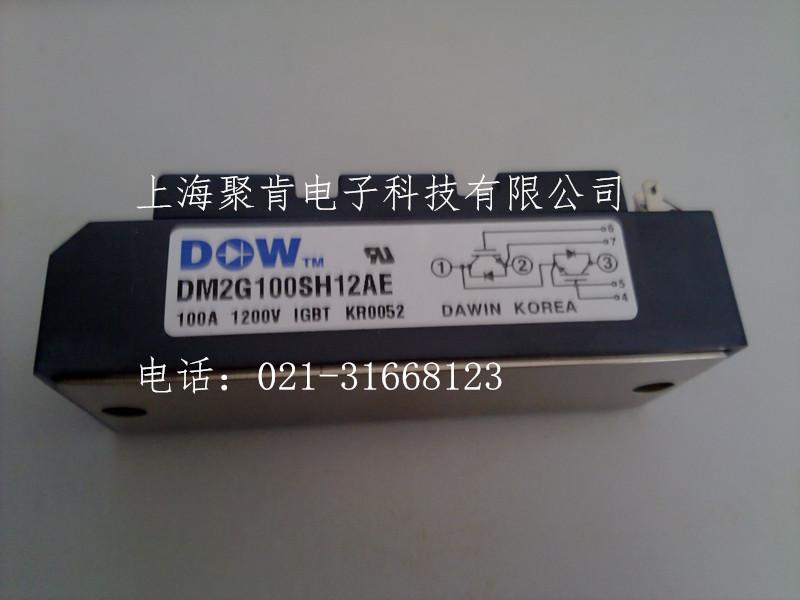 DM2G300SH6N可控硅模块DM2G400SH6N大卫IGBT模块