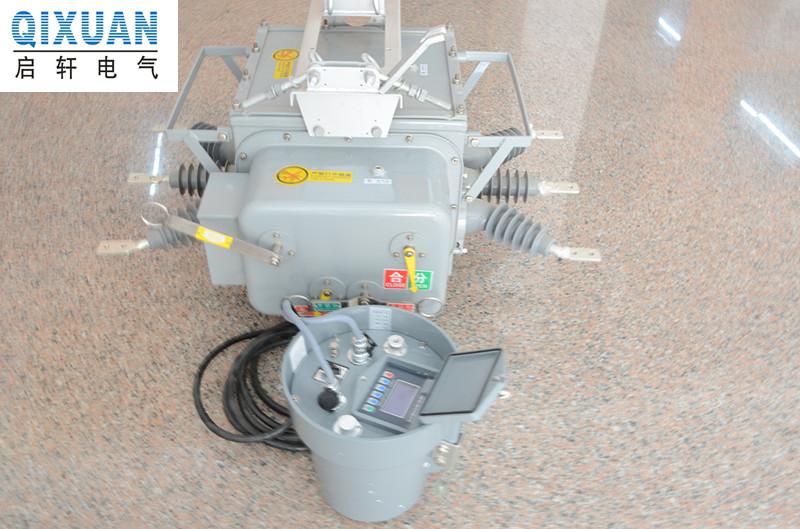 ZW20-12G/630看门狗型真空断路器原理