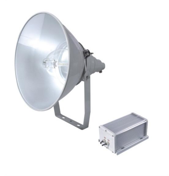 ZY8300-J1000���强抗震型投光灯