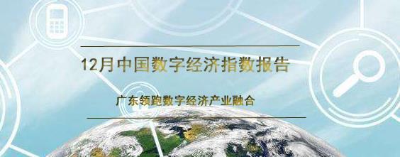 12月中国数字经济指数报告