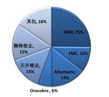 """中国锂电池制造业的""""虚胖""""体质"""