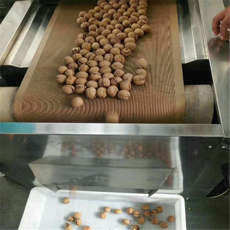 核桃微波杀菌除虫卵设备