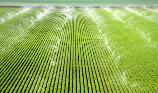 物聯網時代的農業智慧灌溉系統