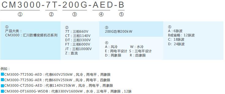 CM3000-660V防爆专用变频机芯