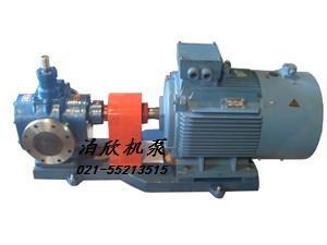 泊欣-圆弧齿轮泵的结构与性能