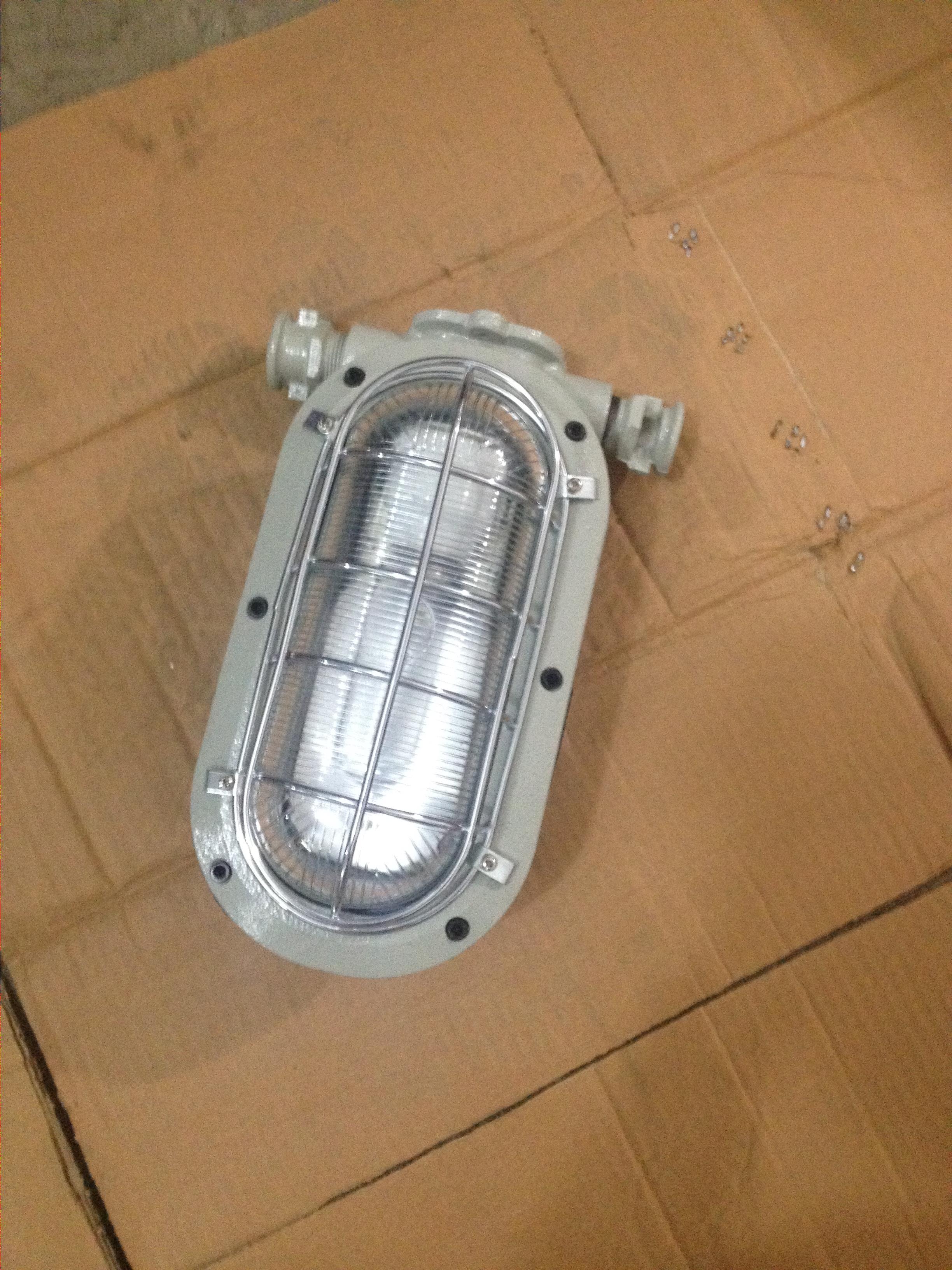 DGC18-127L(A)矿用隔爆型LED支架灯